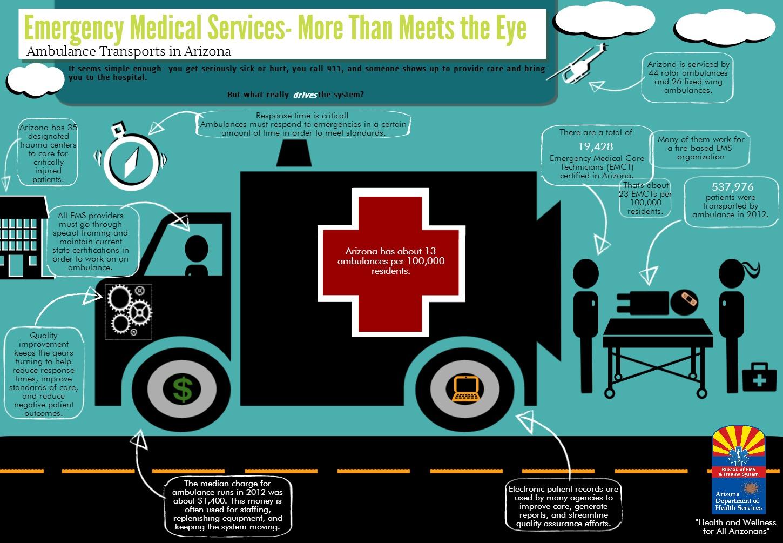 Adhs emergency medical services trauma system graph gallery trauma system 101 motor vehicle crashes arizona ems transports falls prevention xflitez Images